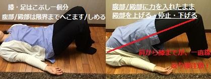 腰痛体操①.jpg