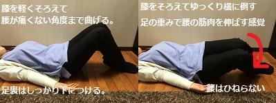 腰痛体操③.jpg